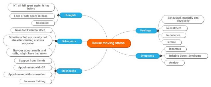 House moving stress
